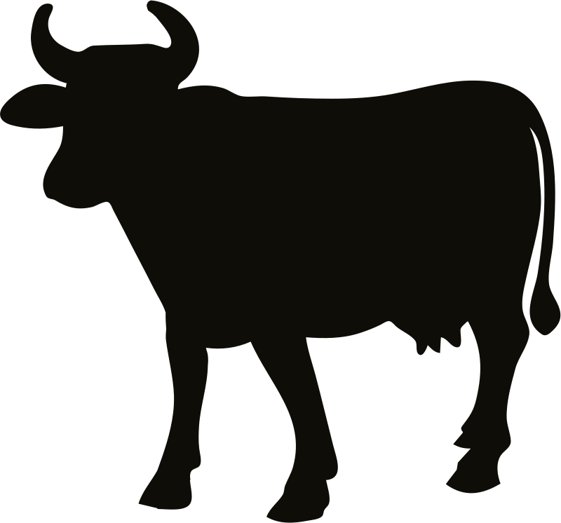 Cattle svg #13, Download drawings