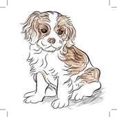 Cavalier King Charles clipart #7, Download drawings