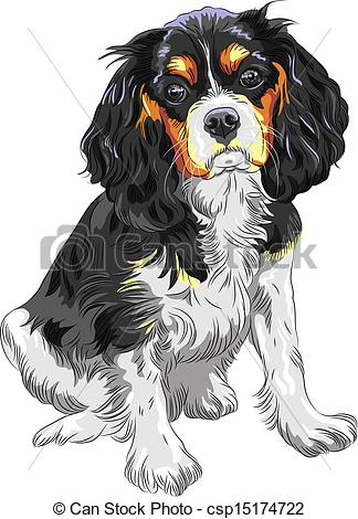 King Charles Spaniel clipart #5, Download drawings