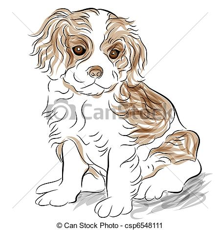 Cavalier King Charles clipart #12, Download drawings