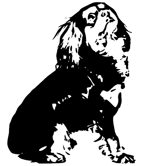 Cavalier King Charles svg #8, Download drawings