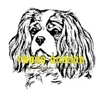 Cavalier King Charles svg #12, Download drawings