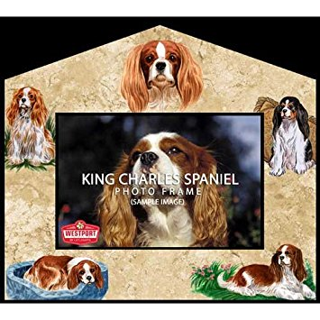 Cavalier King Charles svg #13, Download drawings