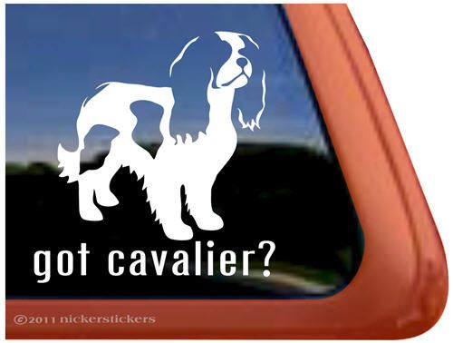 Cavalier King Charles svg #15, Download drawings