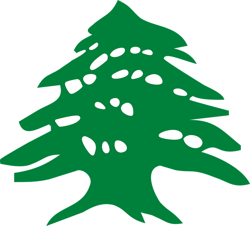 Cedar clipart #7, Download drawings