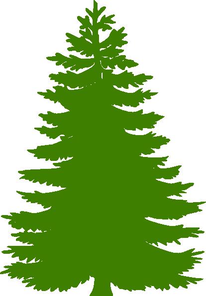 Cedar clipart #19, Download drawings
