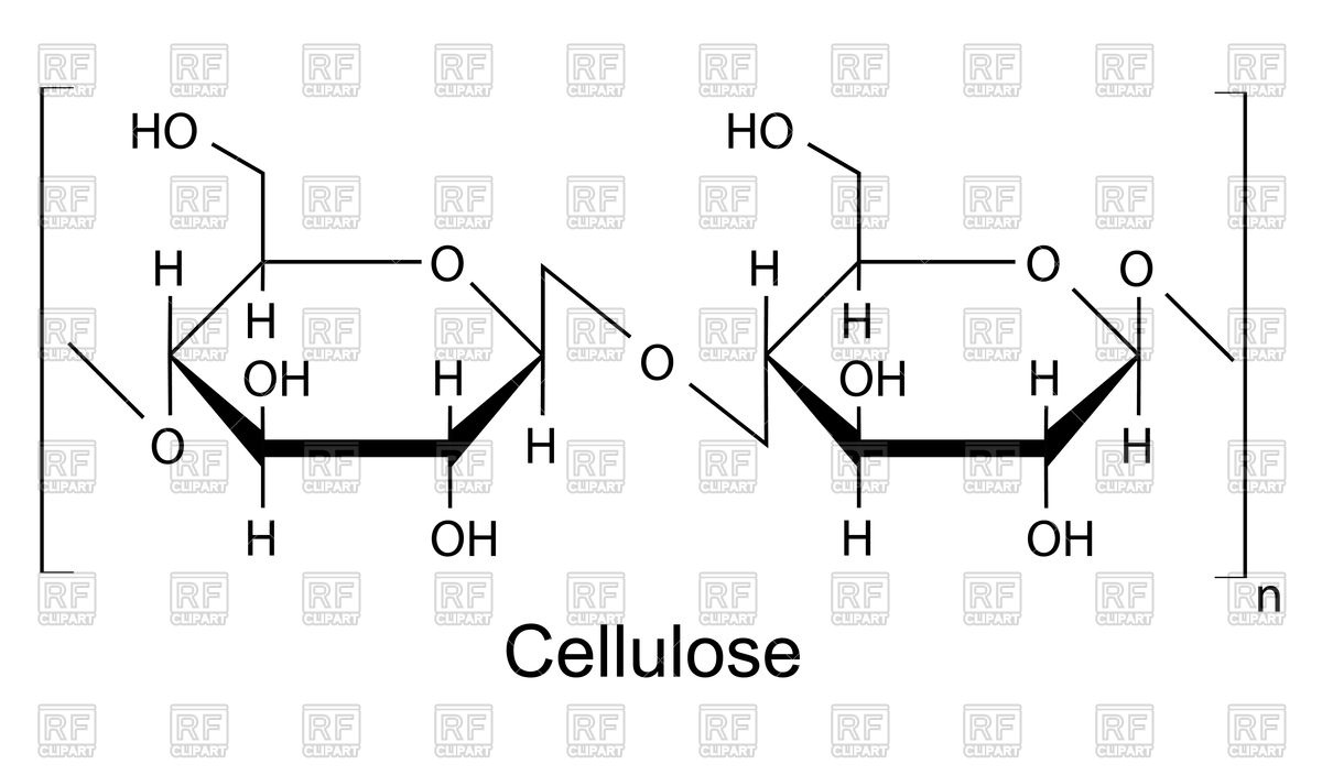 Cellulose clipart #6, Download drawings