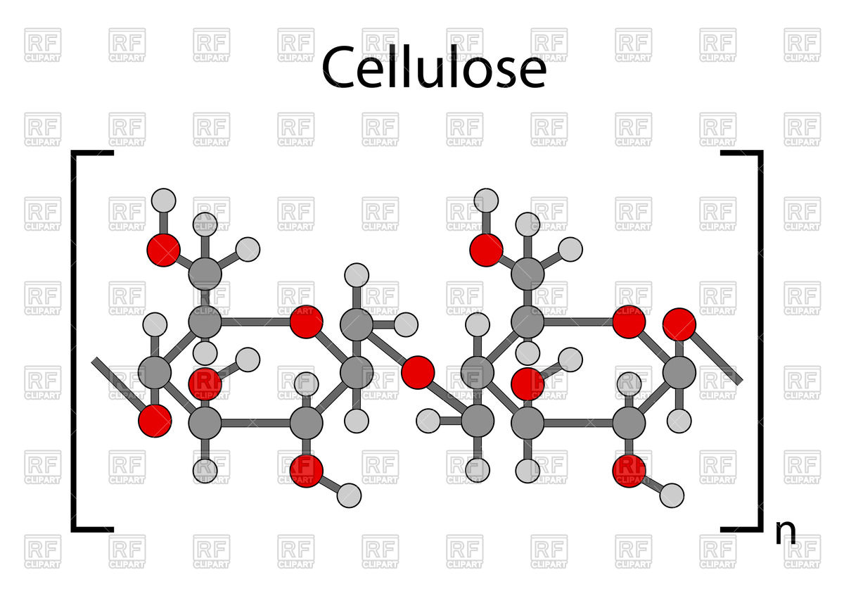 Cellulose clipart #4, Download drawings