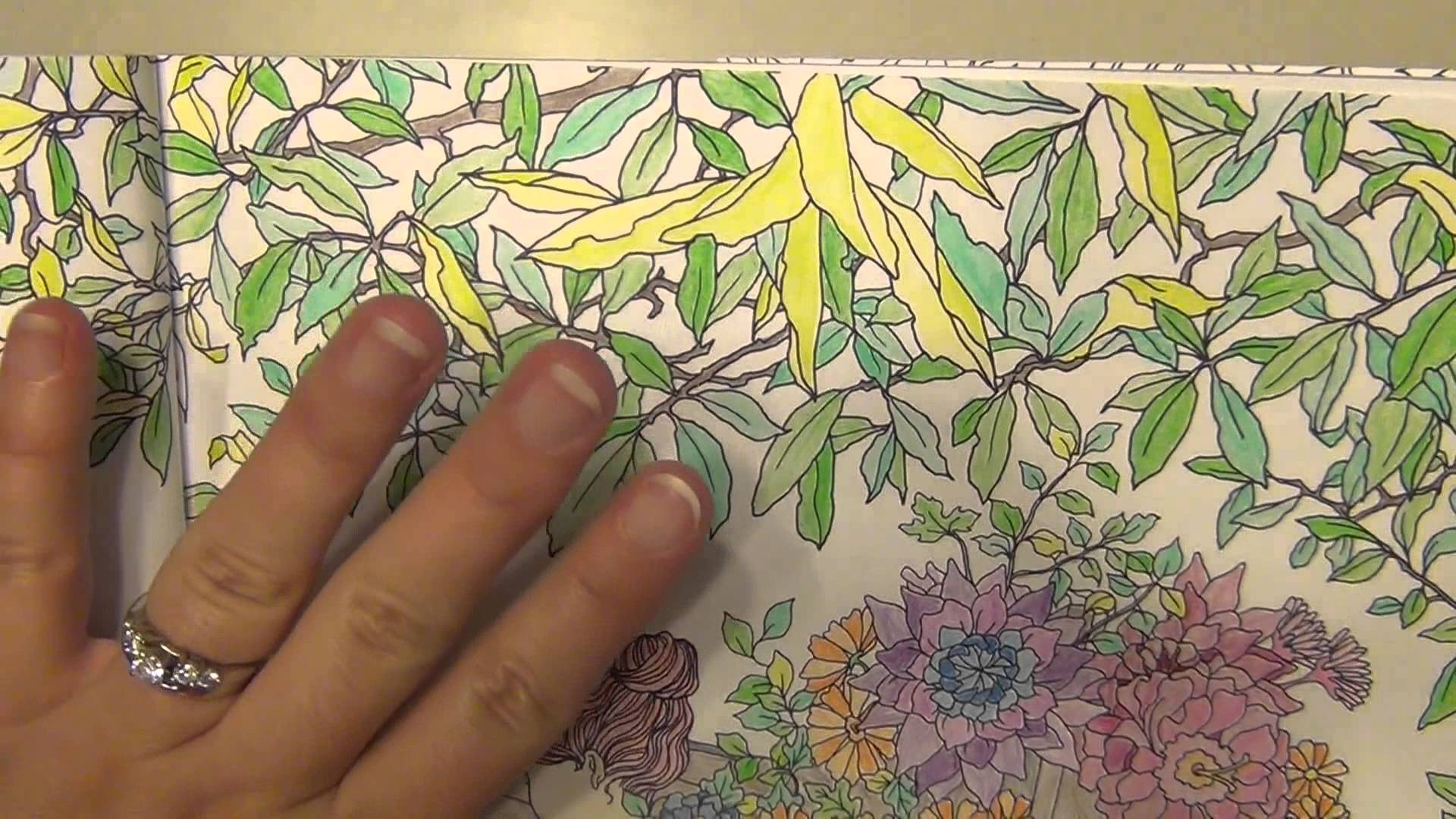 Chaber coloring #13, Download drawings