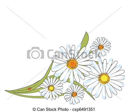 Chamomile clipart #6, Download drawings
