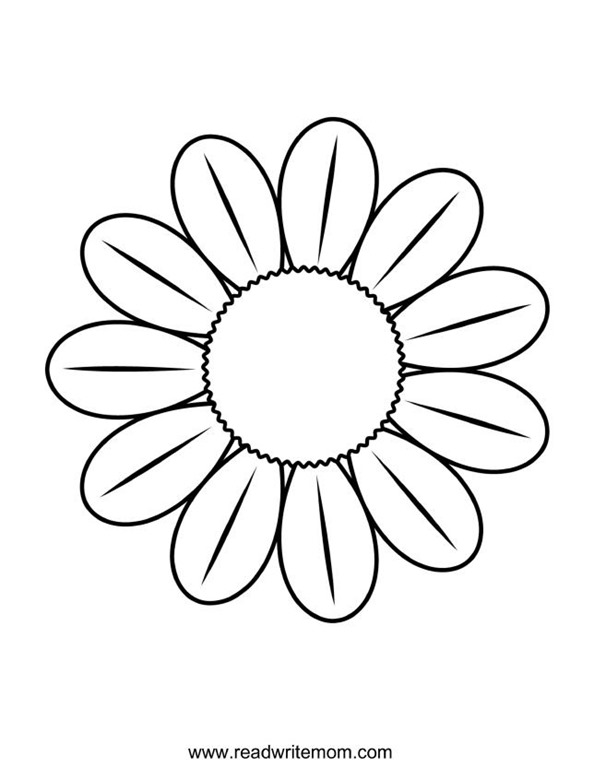 Chamomile coloring #1, Download drawings