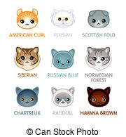 Chartreux clipart #5, Download drawings
