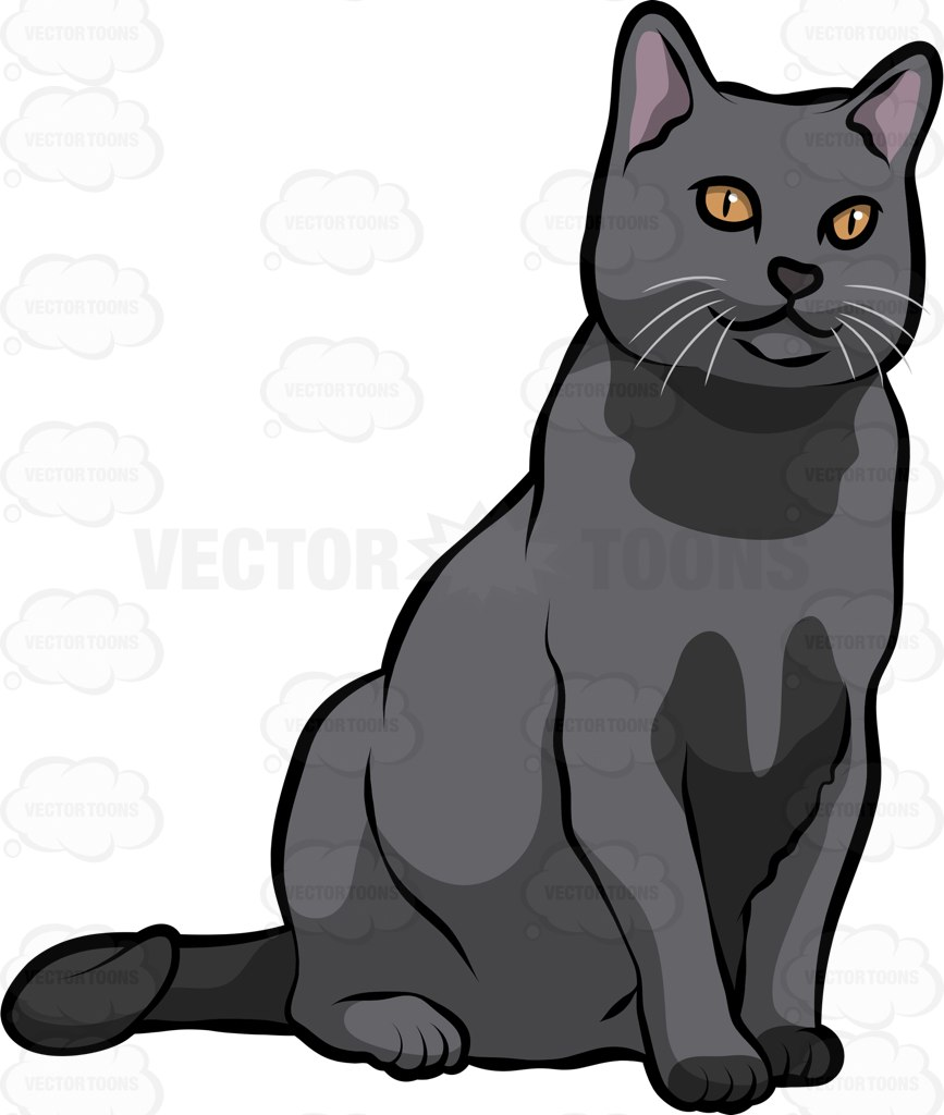 Chartreux clipart #15, Download drawings