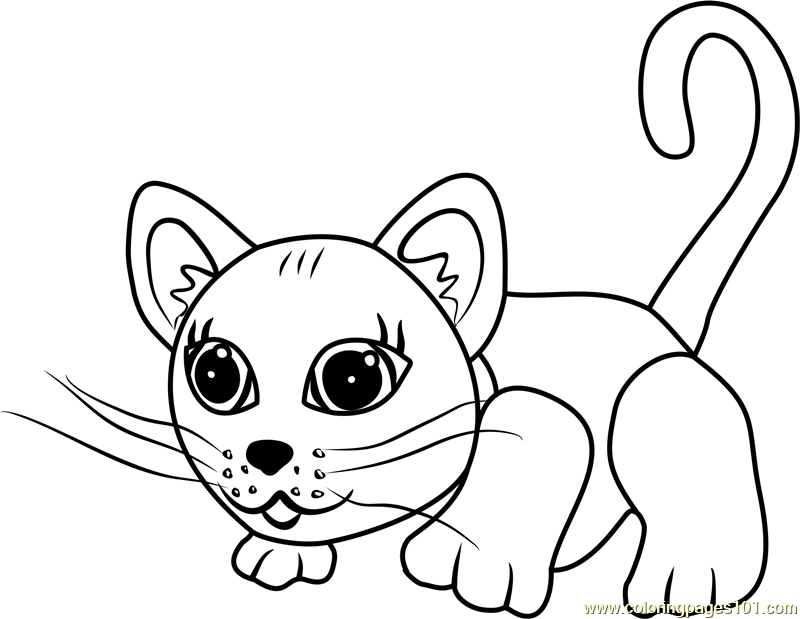 Chartreux coloring #11, Download drawings