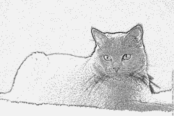 Chartreux coloring #17, Download drawings