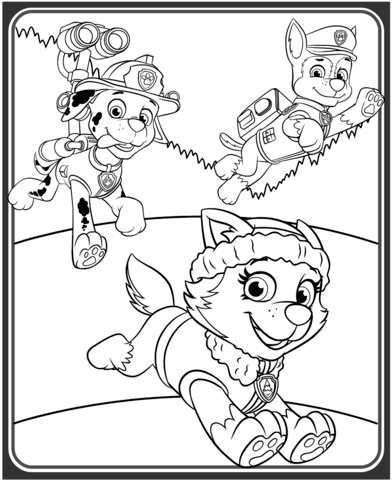 Chase coloring #3, Download drawings