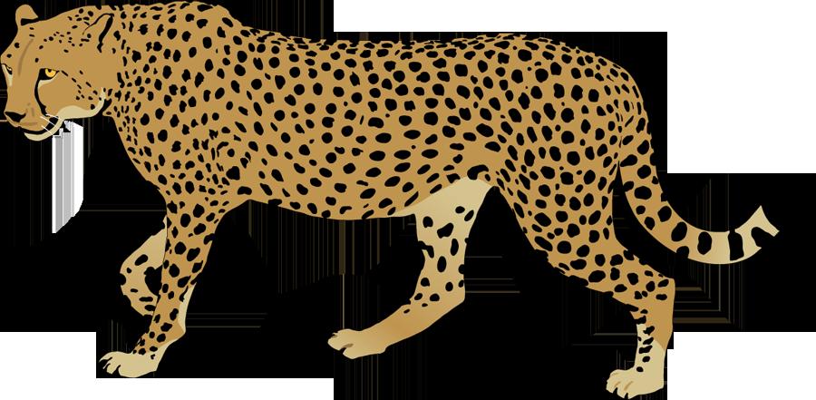 Cheetah clipart #12, Download drawings