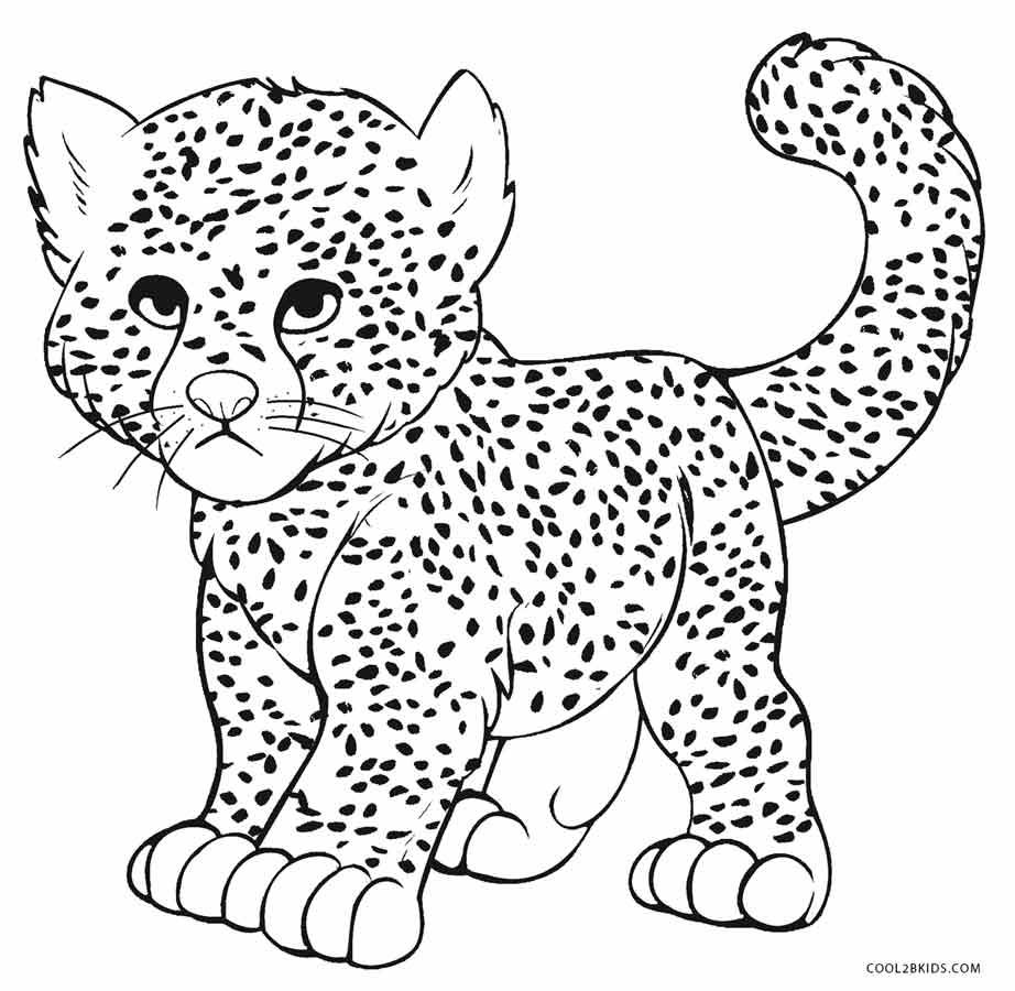 Cheetah coloring #17, Download drawings