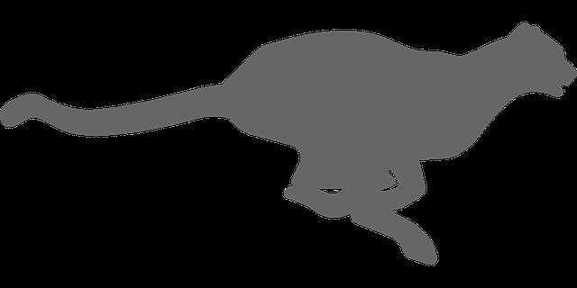 Cheetah svg #11, Download drawings