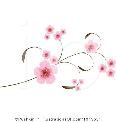 Sakura Blossom clipart #11, Download drawings