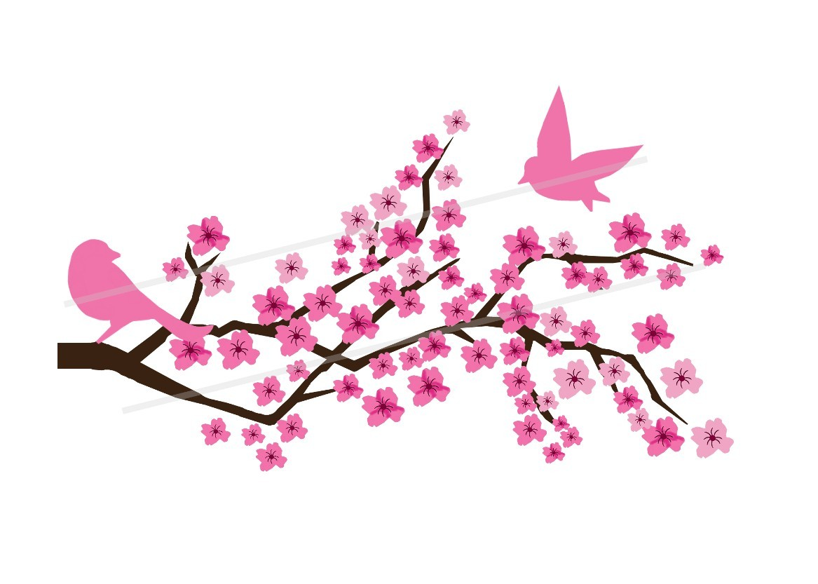 Sakura Blossom clipart #19, Download drawings