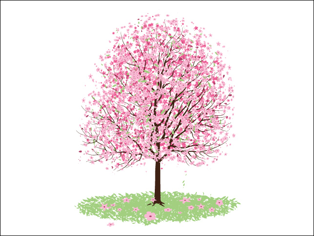 Cherry Blossom clipart #2, Download drawings