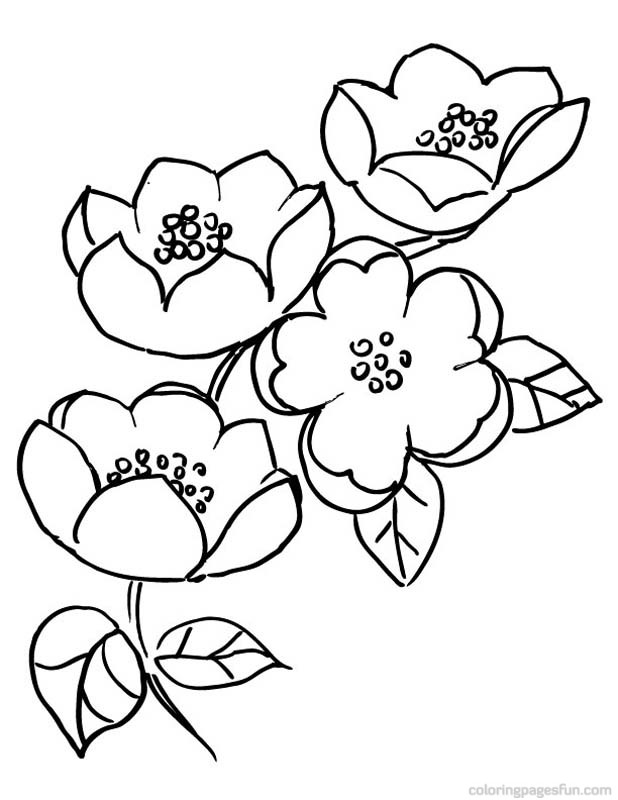 Cherry Blossom coloring #7, Download drawings