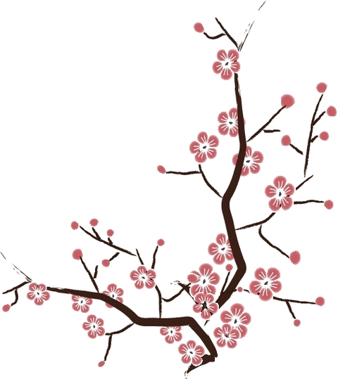 Ume Blossom svg #7, Download drawings