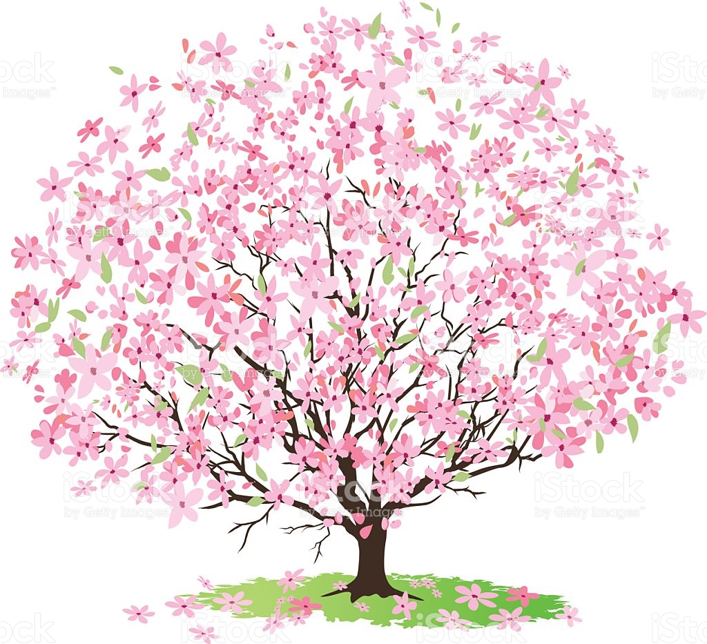 Cherry Tree clipart #7, Download drawings