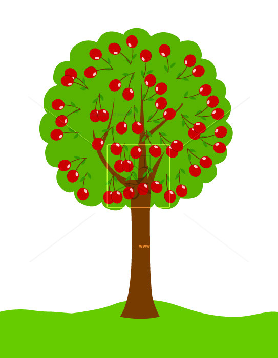 Cherry Tree clipart #8, Download drawings