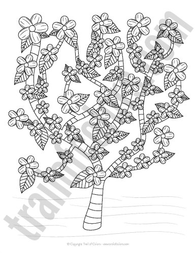 Cherry Tree coloring #3, Download drawings