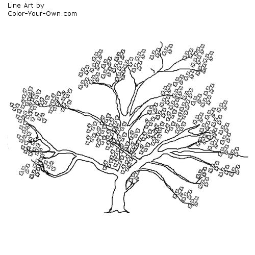 Sakura Tree coloring #17, Download drawings