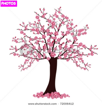 Cherry Tree svg #15, Download drawings