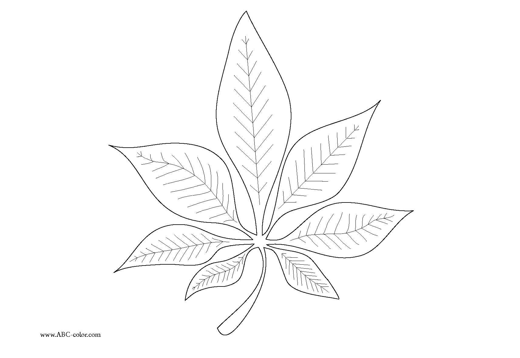 Chestnut coloring #15, Download drawings