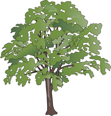 Oak Tree svg #7, Download drawings