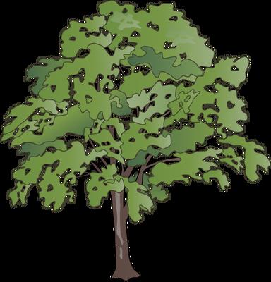 Oak Tree svg #7, Download drawings