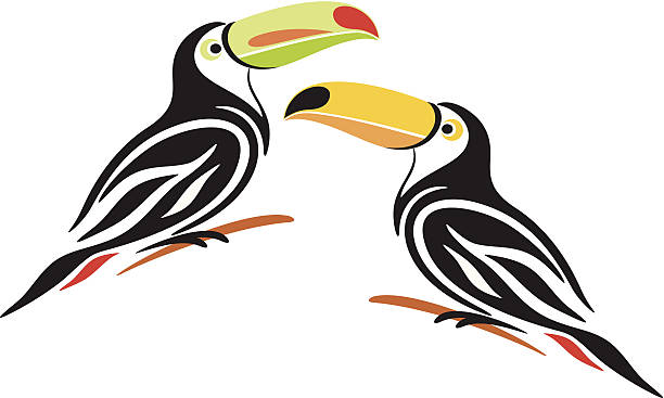 Chestnut-mandibled Toucan clipart #18, Download drawings