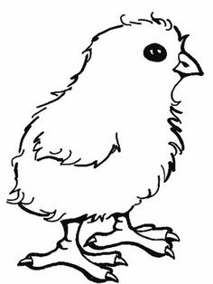 Chick coloring #11, Download drawings