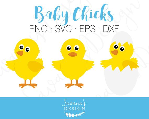 Chick svg #240, Download drawings
