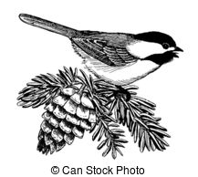 Chickadee clipart #9, Download drawings