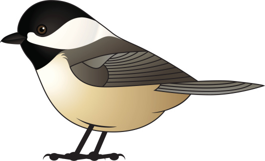 Chickadee clipart #15, Download drawings