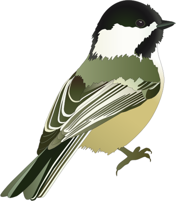 Vireo svg #14, Download drawings
