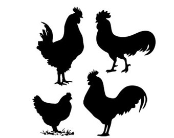Chicken svg #12, Download drawings