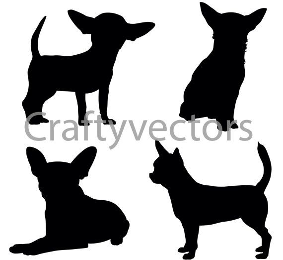 Chihuahua svg #250, Download drawings