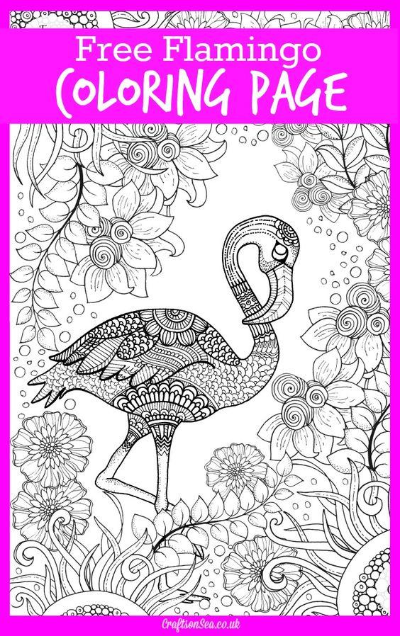 Chilean Flamingo coloring #3, Download drawings