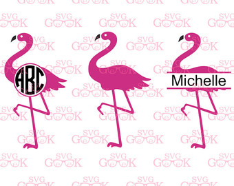 Chilean Flamingo svg #20, Download drawings