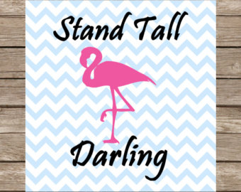 Chilean Flamingo svg #16, Download drawings