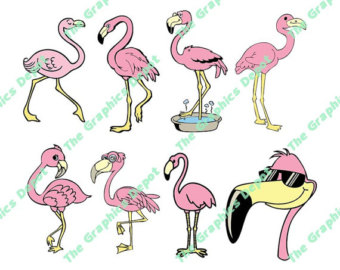Chilean Flamingo svg #6, Download drawings
