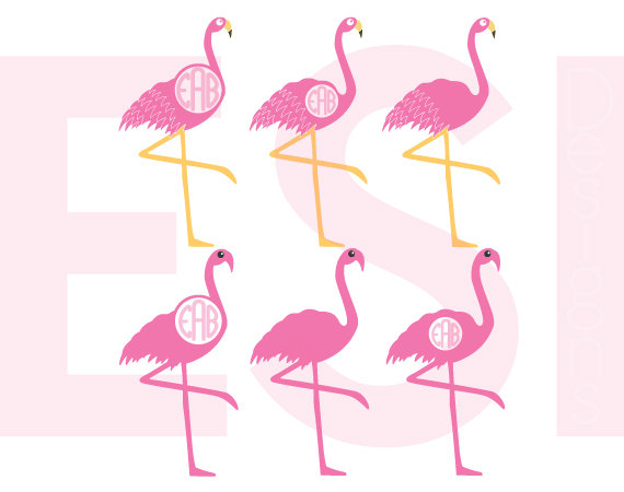 Chilean Flamingo svg #18, Download drawings