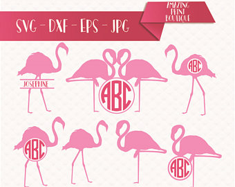 Chilean Flamingo svg #17, Download drawings